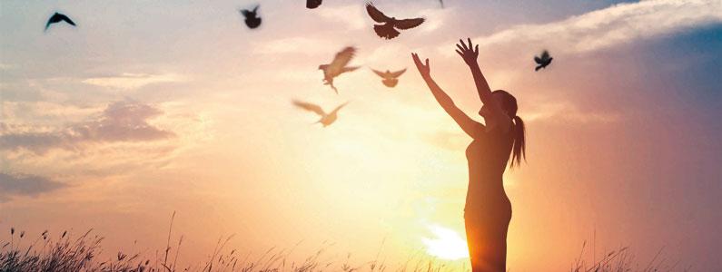 Qual é a importância dos sonhos na tua Vida?