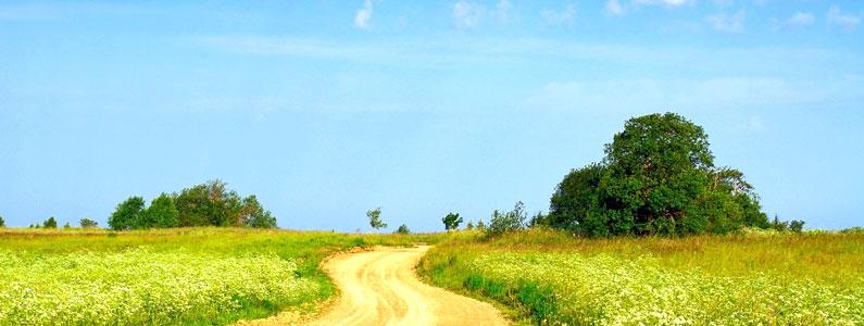 As 9 decisões a tomar para encontrares o teu caminho