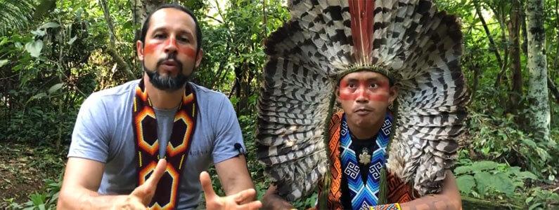 ESTA mensagem vem da Amazónia
